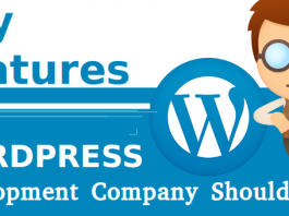 Key Features WordPress Development Company Should HAve